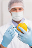 Scientist holding orange and injecting fluid with syringe