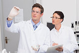 Scientists looking attentively at pill