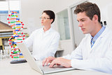 Scientist working attentively with laptop and another with dna model