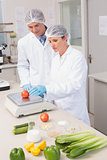 Scientists weighing tomato