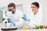 Scientists examining vegetables