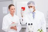Scientist examining peppers while colleague writing in clipboard