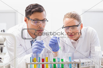 Focused scientists examining test tube