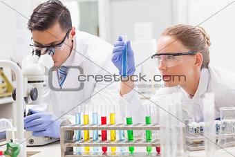Focused scientists examining test tube