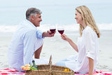 Happy couple toasting with red wine during a picnic