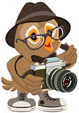 Owl hipster in hat and sunglasses holding retro camera. Bird photographer