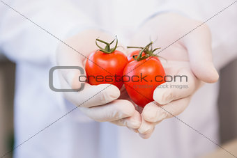 Food scientist showing tomatoes