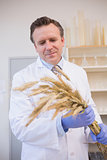 Scientist holding sheaf