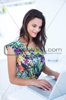 Smiling beautiful brunette using her laptop