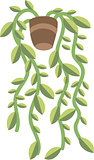 Vector illustration of plant in a pot