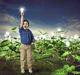 Lightbulb in a ideas field