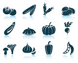 Set of vegetables icon