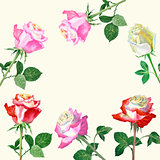 Background with red roses-04