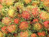 Delicious tropical fruit rambutan