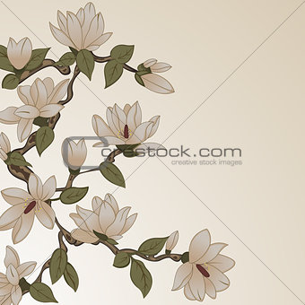 Floral background with magnolia