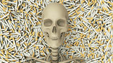 Cigarettes and Skeleton