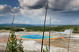 Landscape view of Grand prismatic spring with dry trees in Yello