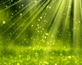 Green Background With Beams,