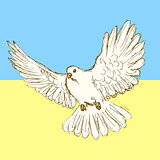 Sketch peace dove for Ukrainian war