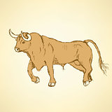 Sketch angry bull in vintage style