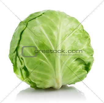 Fresh cabbage ripe vegetable