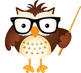 Teacher owl