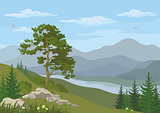 Mountain landscape with tree