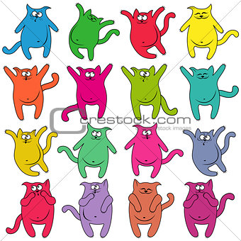 Sixteen thick funny cats