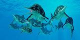 Ichthyosaur Hunting Group
