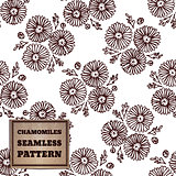 Seamless pattern with bouquet of chamomiles