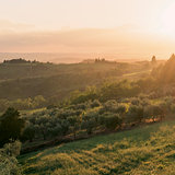 Landscape and sunset. Tuscany, Italy