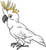cockatoo parrot cartoon illustration