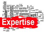 Expertise word cloud with red banner