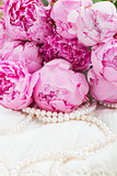 pink a  peony on lace