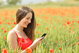 Girl texting in a smart phone in a colorful field