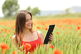 Woman reading ebook in a red field