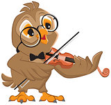Owl plays the violin