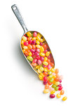 jelly beans in scoop