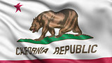 US state flag of California waving in the wind.