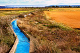 Irrigation water channel.