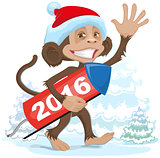 Christmas monkey wearing a Santa Claus brings fireworks 2016