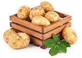 New potatoes in box with green leaves