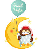 Good night owl holding a balloon