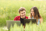 Couple or friends watching laptops in a field