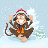 Monkey is sitting on snow and puts cap of Santa Claus