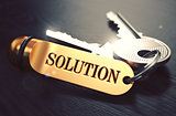 Keys to Solution. Concept on Golden Keychain.