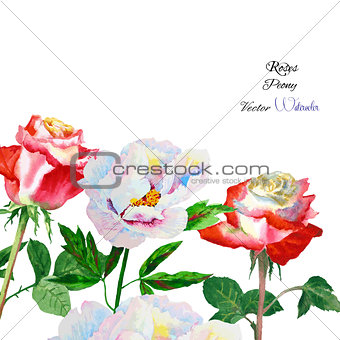 Background with rose and peony-01