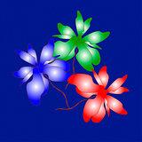 Stil life. Bouquet on fine-grained blue background.
