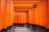 Torii Gates of Fushimi Inari Shrine