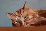 Pensive red cat